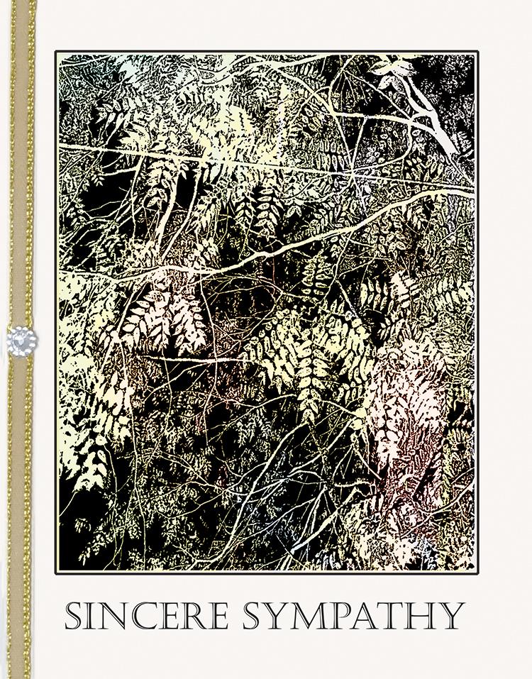 Foliage greeting card by Kathryn Hanson, ShutteredEye.